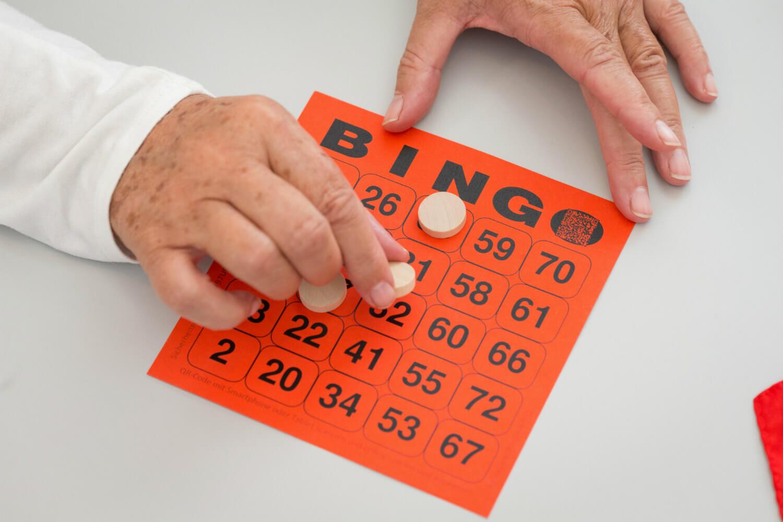 bingo gra